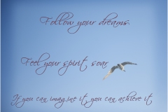 An inspirational thought...Follow Your Dreams
